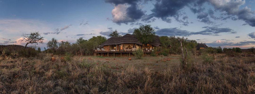 A Guide to Madikwe Hills Safari Lodge
