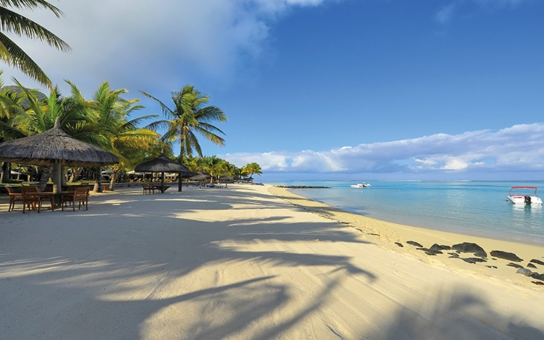 Swim with Dolphins in Magical Mauritius!